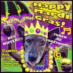 """The Dingo Starring as the Mardi Gras King"" digital image"
