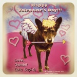 """The Dingo Starring as Cupid"" digital image"